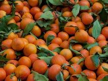 Klementinen am Markt Stockbild