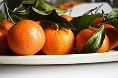 Klementinen mit Bl?ttern lizenzfreies stockbild