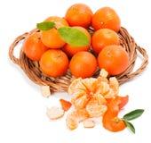 Klementinen mit Segmenten mit Blättern Lizenzfreie Stockfotos