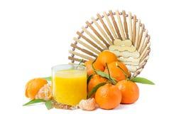 Klementinensaft lokalisiert lizenzfreie stockfotografie