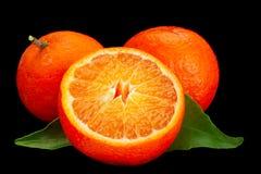 KlementinenZitrusfrucht auf Schwarzem lizenzfreies stockfoto
