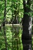 Kletsch park w Glendale Wisconsin zdjęcia royalty free