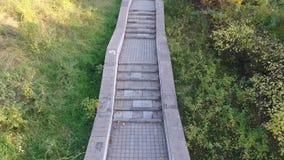 Klettern Sie die alte Treppe im Park stock video footage