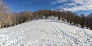 Klettern zur Spitze des Berges mit einer Decke des Schnees Lizenzfreies Stockbild