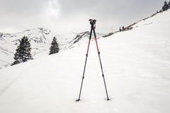 Kletternde Stöcke im Schnee stockfoto