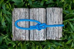 Kletterseil mit einem Palstekknoten Stockfoto