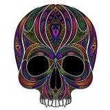 Kleur de menselijke schedel Zonder de lagere kaak Royalty-vrije Stock Afbeeldingen