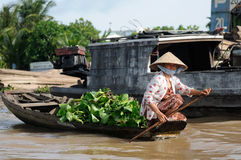 Kleur het zwemmen markten in Vietnam in de Mekongu-delta Royalty-vrije Stock Foto