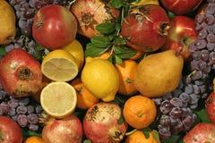 Kleur van fruit Royalty-vrije Stock Foto's