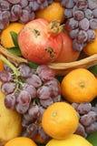 Kleur van mediterraan fruit Royalty-vrije Stock Afbeeldingen