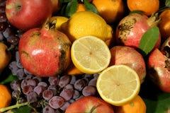 Kleur van mediterraan fruit Stock Afbeeldingen
