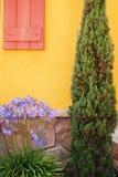 Kleur van Sereniteit Stock Fotografie