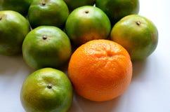 Kleur van Sinaasappelen Stock Foto