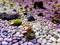 Kleur van Stenenstijging stock fotografie