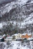 Kleuren in de sneeuw Stock Fotografie