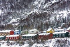 Kleuren in de sneeuw Stock Foto's