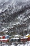 Kleuren in de sneeuw Stock Afbeeldingen