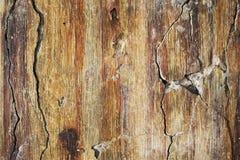 Kleuren heldere textuur van het vernietigde beton met de verschijnende roest en de barsten in grunge royalty-vrije stock afbeelding