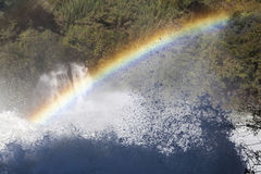 Kleuren op de rivier Stock Fotografie
