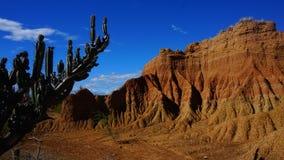 Kleuren op de woestijn royalty-vrije stock fotografie