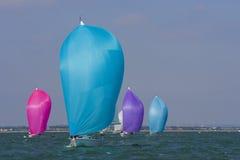 Kleuren op zee Stock Foto's