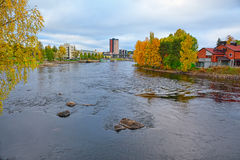 Kleuren van de herfst Stock Foto's