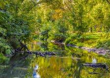 Kleuren van de herfst Royalty-vrije Stock Fotografie
