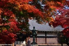 Kleuren van de herfstbladeren, Kyoto Japan stock afbeelding