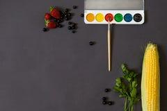 Kleuren van de zomerconcept Vruchten en waterverfpalet op donkere achtergrond Royalty-vrije Stock Afbeelding