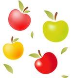 Kleuren vectorappelen met bladeren Stock Afbeeldingen