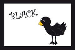 Kleuren: zwart Royalty-vrije Stock Afbeeldingen