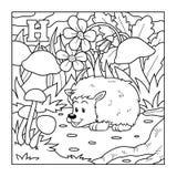 Kleurend boek (egel), kleurloze illustratie (brief H) Stock Afbeeldingen