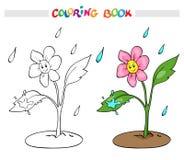 Kleurende boek of pagina Het bloemmadeliefje verheugt zich regen Stock Foto's
