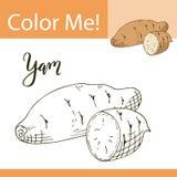 Kleurende boek of pagina van groente Vectorillustratie met hand getrokken yam Royalty-vrije Stock Fotografie