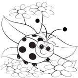 Kleurende pagina - Lieveheersbeestje en madeliefje Stock Fotografie