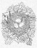 Kleurende pagina met een nest en vogelseieren royalty-vrije illustratie