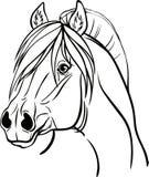 Kleurende pagina met een portret van een paard Stock Foto
