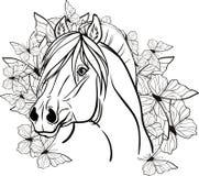 Kleurende pagina met een portret van een paard Stock Fotografie