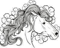 Kleurende pagina met een portret van een paard Stock Afbeeldingen