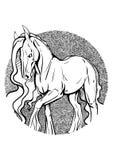 Kleurende pagina met paard Royalty-vrije Stock Afbeelding