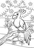 Kleurende pagina's vogels Weinig leuke papegaai Royalty-vrije Stock Afbeelding