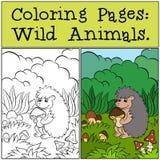 Kleurende Pagina's: Wilde dieren Weinig leuke egel stock illustratie