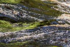 Kleurengolven en draaikolken van de rivier stock afbeelding