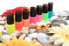 Kleurennagellak Stock Foto