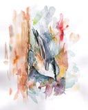 Kleurennuthatch Stock Afbeelding