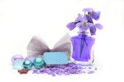 Kleurenoogschaduw en bloemen Stock Afbeelding