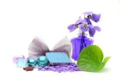 Kleurenoogschaduw en bloemen Royalty-vrije Stock Afbeeldingen
