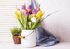 Kleurentulpen in het riet Stock Foto