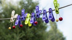 Kleurenwasknijpers Stock Afbeelding