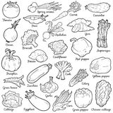 Kleurloze reeks met groenten, vectorbeeldverhaalstickers Stock Fotografie